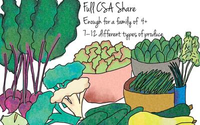 mary-kitchen-gardens-full-share-produce